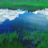 بهار طبیعت؛ فرصتی تازه برای بازسازی روان(قسمت دوم؛آفاق و انفس)